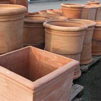 Le jardin de victoria cr ation et entretien de terrasses for Le jardin 75015